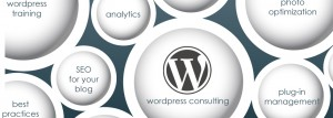 wordpress consulting graphic